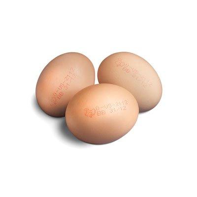 Оборудование для маркировки яиц