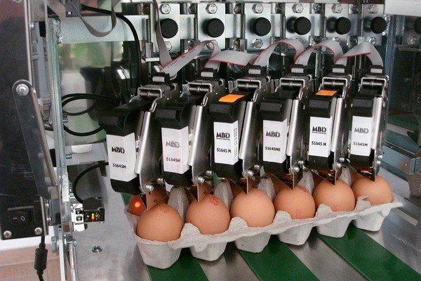 (Укр) [:ru}]Маркировка куриных яиц в лоткахМаркування курячих яєць в лотках