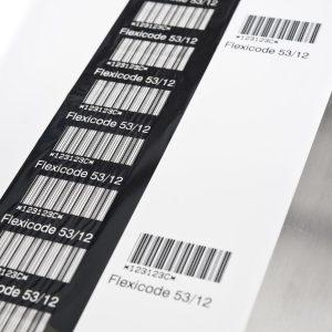 Flexicode - приклад роблти системи економії рібона